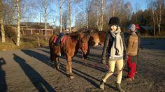 Wasa Wellnessin tyky päivä Stall Falisa 10.11.2017 www.stallfalisa.fi #teamfalisa #beautifulday #horses #ridinghorses #daytogether