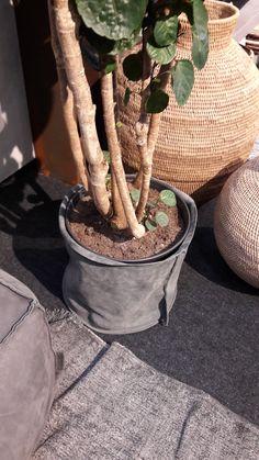 Plantenpot _ lerenzak
