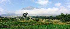 Mount Rinjani Trekking package