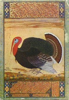 Turkey by a Mughal artist, painted in 1612