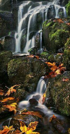 Fairy Falls - Columbia River Gorge - Oregon - USA