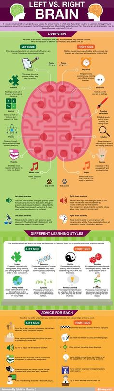 Psychology infographic and charts Left Brain vs. Right Brain (Infographic) Infographic Description Left Brain vs. Right Brain -- Have you ever wondered Left Vs Right Brain, Right Side Stroke, Coaching, Mental Training, Learning Styles, Social Work, Speech Therapy, Massage Therapy, Good To Know