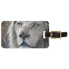 African white Lion listens to my heartbeat wild cat safari luggage tag