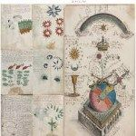 The Voynich Manuscript. A theory is that it was an alien diary, like our botanists or ethnological field researchers would have made 150 years ago.