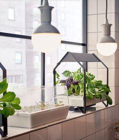Modernes Wohnzimmer Ikea Wohnzimmer Deko Ikea Vorhang Wohnzimmer Modern  Wohnzimmer Mu2026 | Startseite | Pinterest