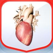 Pocket Heart redefines what engaging medical education content truly is. Our award-winning realtime beating 3D heart app, with its elegant design, contains quizes, clinical cases and over 20,000 words of learning material.