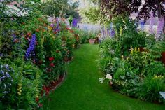 In My Cottage Garden: Personal Scale Urban Farming Easy Garden, Lawn And Garden, Garden Paths, Garden Landscaping, Garden Ideas, Backyard Ideas, Garden Of Earthly Delights, Tall Plants, Delphinium