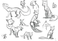 as much as I've drawn the faces of many animals, I haven't really drawn the entire body. I decided to start with a fox, thinking i could find a bunch of reference images, I was wrong. There were on...
