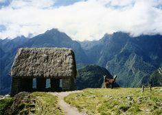 Pushmi-pullyu, Peru | Flickr - Photo Sharing!