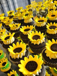 The cutest sunflower cupcakes http://beautiful-bridal.blogspot.com/2012/02/sunflower-cupcake-wedding-ideas.html To see more sunflower themed wedding items: http://www.squidoo.com/sunflower-weddings