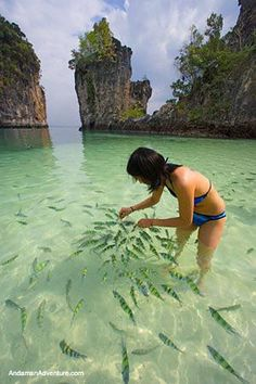 Feeding the fish in Ao Nang, Thailand. Ao Nang is a small resort town in the Mueang Krabi District of Krabi Province, Thailand. Ao Nang Thailand, Krabi Thailand, Thailand Travel, Asia Travel, Thailand Honeymoon, Adventure Holiday, Adventure Travel, Thailand Adventure, Beach Adventure