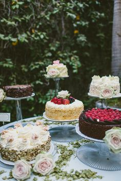 Simple green and pink roses along with hops from Green Flash Brewing help make this beer themed wedding a success.  Thank you Extraordinary Desserts, Hannah Smith Events and Sergeant Creative Photography