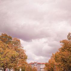 """1,032 mentions J'aime, 13 commentaires - Camille Talks ⚓️🎈 (@camilletalks) sur Instagram: """"Clermont s'habille des jolies couleurs d'automne 🍁🍂 Je vous souhaite un bon samedi 💛"""""""