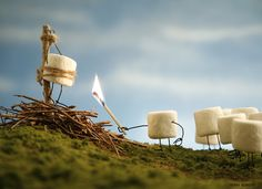 Bent Objects: Martyr-mallow - Martyr-mallow by Terry Border (marshmallow being burnt at stake) http://bentobjects.blogspot.com/2012/07/martyr-mallow.html #Art #Funny