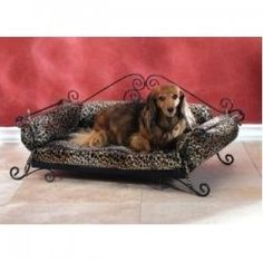 Looking for a Fancy Dog Bed for your precious pampered pooch? Here you will find all the fancy dog beds a pampered pooch and it's loving owner...