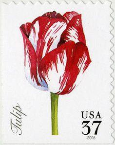 USA, 2005. 37c Tulip single