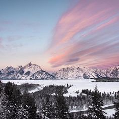 A frosty cotton candy sunrise over the Tetons.