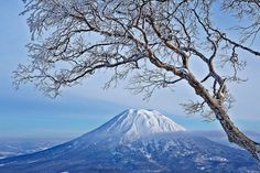 Photo from Niseko Hirafu: Mt Yotei, taken at  3:25 pm 29 Dec 2012 by Method