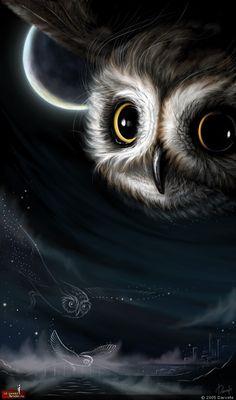 Constellation Owls by Darvete