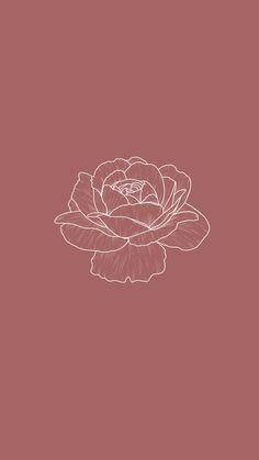 Minimalist Botanical Line Illustration - galerie design studio Iphone Background Wallpaper, Pastel Wallpaper, I Wallpaper, Aesthetic Iphone Wallpaper, Flower Wallpaper, Aesthetic Wallpapers, Simple Iphone Wallpaper, Iphone Minimalist Wallpaper