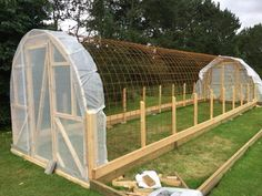 Home greenhouse ideas Tunnel Greenhouse, Aquaponics Greenhouse, Indoor Greenhouse, Backyard Greenhouse, Aquaponics Fish, Small Greenhouse, Greenhouse Plans, Hydroponics, Pallet Greenhouse