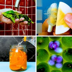 Diy Cleaning Products, Cleaning Hacks, Girl Life Hacks, Dyi, Hacks Videos, Hydroponic Gardening, Aesthetic Makeup, Small Gardens, 5 Minute Crafts