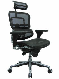 Raynor Ergohuman Chair - Mesh, High-Back w/ Headrest ME7ERG