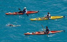Nadadora americana Diana Nyad completa travessia de Havana à Flórida - http://epoca.globo.com/vida/fotos/2013/09/nadadora-americana-diana-nyad-completa-travessia-de-bhavana-floridab.html (Foto: Florida Keys News Bureau, Andy Newman/AP)