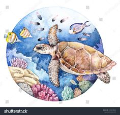 Appetizer Watercolor Coral Reef Fish Turtle Underwater Stock Illustration 1045578028 How Durable Are Coral Reef Drawing, Coral Painting, Coral Watercolor, Watercolor Fish, Watercolor Animals, Watercolor Illustration, Watercolor Paintings, Fish Illustration, Underwater Drawing