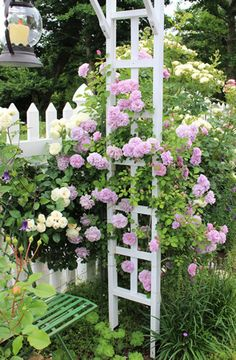 Should use a small arbor with climbing roses out back Garden Arch Trellis, Garden Fencing, Farmhouse Garden, Garden Windows, Small Space Gardening, Climbing Roses, Rose Cottage, Flowers Nature, Garden Inspiration