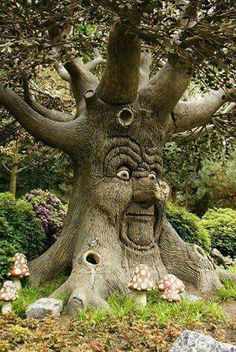 This says Enchanted Forest but, I don't remember seeing this? A Tree From The Enchanted Forest Weird Trees, Tree People, Tree Faces, Tree Carving, Unique Trees, Green Man, Fairy Houses, Tree Art, Amazing Nature