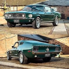 Ford Mustang Fastback - PHOTOGRAPHY Right now, they've already extraordinarily at ease, luxurious and 1967 Mustang, Ford Mustang Fastback, Ford Mustangs, Ford Mustang Shelby Cobra, Mustang Cars, Classic Mustang, Chevy C10, Chevrolet, Pony Car