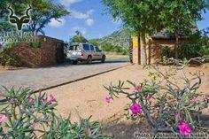 KNP - Berg-en-dal - Entrance Gate Kruger National Park, National Parks, Entrance Gates, South Africa, Plants, Entrance Doors, Front Gates, Plant, Planets
