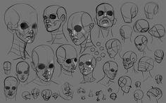 face+studies.png (1000×627)