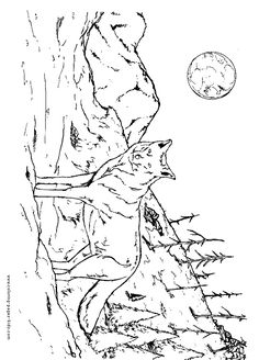 Wolf coloring pages, color plate, coloring sheet,printable coloring picture