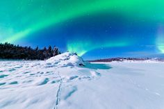 Request a Northern Lights wake up call! Check out all that is amazing in Alaska