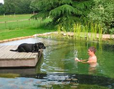 A gorgeous private natural pool: Natural Pools are like mini eco-systems that provide clean, clear water and avoid the harmful chlorine and chemicals used to clean other man-made pools.