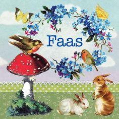 Geboortekaartje Faas- nostalgische vintage collage van oude prenten met paddestoel vogels en konijnen. www.petitkonijn.nl