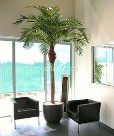 Anthracite ceramic pots Majesty Palm, Ceramic Pots, Plant Growth, Artificial Plants, Relax, Ceramics, Interior, Design, Products