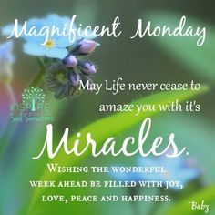 Magnificent Monday...