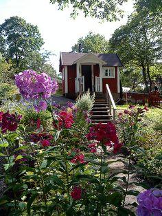 Up the garden path to allotment hut at Skansen
