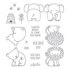 A Little Wild Clear-Mount Stamp Set by Stampin' Up!