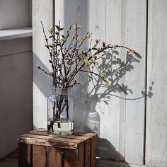 Natural World, Sunny Days, Vase, Instagram Posts, Furniture, Home Decor, Decoration Home, Room Decor, Home Furnishings