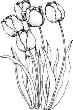 Flowers coloring pages Super Coloring Part 3 Digi