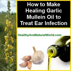 How To Make Healing Garlic Mullein Oil to Treat Ear Infection