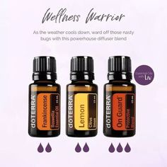 ~Even more immune support~ . I've been fighting a cold and if you saw my earlier post, I've been drinking a beautiful immune boosting tea. Best Oils, Best Essential Oils, Essential Oil Uses, Essential Oils For Headaches, Essential Oil Diffuser Blends, Doterra Diffuser, Aromatherapy Oils, Doterra Essential Oils, Doterra Blends