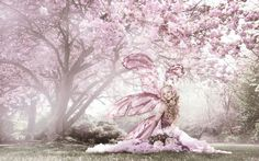 Cherry-Blossom Meadow Nymph