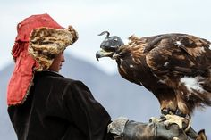 Golden Eagle Festival in Mongolia 03