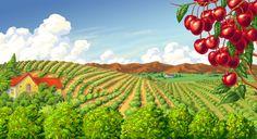 La sfarsitul lunii mai incepe sezonul pentru cirese. Asigurati-va din timp ca aveti suficiente ladite din lemn http://www.laditedinlemn.ro/ladite-legume-fructe/ #ladite #lemn