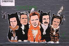 ferrell cats.